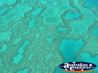 View over Heart Reef from Seaplane . . . CLICK TO ENLARGE