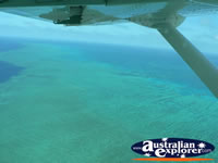 View over Reef from Seaplane . . . CLICK TO ENLARGE