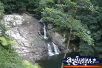Springbrook Walk Waterfall- Gold Coast Hinterland . . . CLICK TO ENLARGE