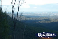 Springbrook Wunburra Lookout View of Gold Coast Hinterland . . . CLICK TO ENLARGE
