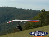 Hand glider ready for takeoff on Tamborine Mountain . . . CLICK TO ENLARGE