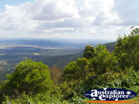 View from Tamborine Mountain Lookout . . . CLICK TO ENLARGE