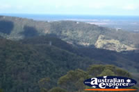 Tamborine Mountain Lookout Views of the Gold Coast Hinterland . . . CLICK TO ENLARGE
