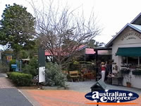 Tamborine Mountain Shops and Street . . . CLICK TO ENLARGE