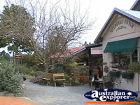 Tamborine Mountain Cute Shops . . . CLICK TO ENLARGE