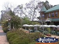 Tamborine Mountain Shops . . . CLICK TO ENLARGE
