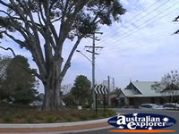 Tamborine Mountain Street and Roundabout . . . CLICK TO ENLARGE