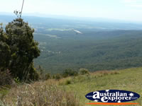 Tamborine Mountain Views . . . CLICK TO ENLARGE