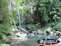 Small Waterfall on the Tamborine Mountain Walk . . . CLICK TO ENLARGE