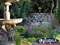Tamborine Mountain Winery Gardens . . . CLICK TO ENLARGE