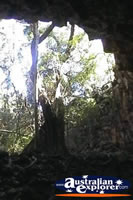 Queensland's Undara Lava Tubes . . . CLICK TO ENLARGE