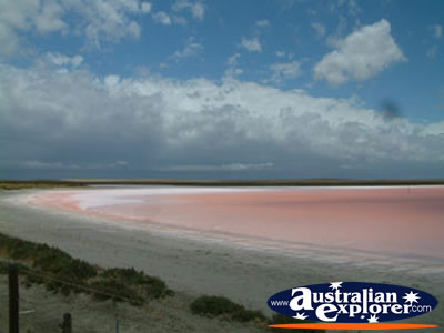 Pink Lake Between Strathalbyn And Tailem Bend Photograph
