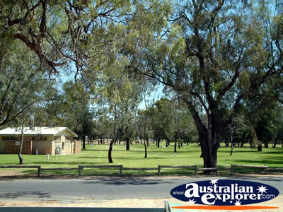 Waikerie Park . . . CLICK TO VIEW ALL WAIKERIE POSTCARDS