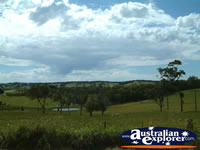 Pretty Landscape Between Hahndorf and Victor Harbour . . . CLICK TO ENLARGE