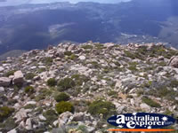 View from Mount Wellington of Hobart . . . CLICK TO ENLARGE