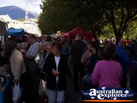 Hobart - Salamanca Place Markets . . . CLICK TO ENLARGE