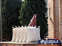 Warracknabeal Statue . . . CLICK TO ENLARGE