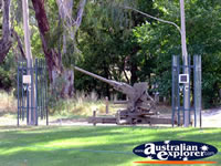 Euroa Gun . . . CLICK TO ENLARGE