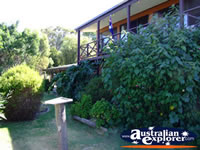 Yackandandah Beaumont B & B Outdoors . . . CLICK TO ENLARGE
