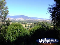Yackandandah View from Beaumont B & B . . . CLICK TO ENLARGE
