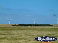 Codrington Wind Farm on way to Port Fairy . . . CLICK TO ENLARGE