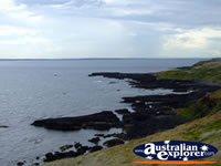 View of Phillip Island from the Nobbies . . . CLICK TO ENLARGE