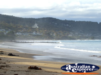 Beachfront at Apollo Bay . . . CLICK TO ENLARGE