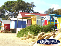 Colourful Beach Huts on Mornington Beach . . . CLICK TO ENLARGE