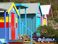 Bright Beach Huts . . . CLICK TO ENLARGE