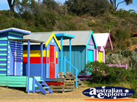 Beach Huts . . . CLICK TO ENLARGE