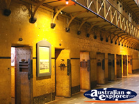 Cell Doors in the Old Melbourne Gaol . . . CLICK TO ENLARGE
