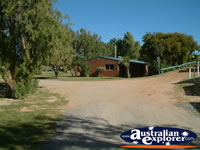 Dongara Caravan Park Grounds . . . CLICK TO ENLARGE