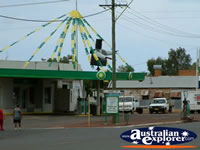 Coolgardie Bandit . . . CLICK TO ENLARGE