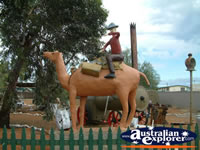 Coolgardie Outdoor Collection . . . CLICK TO ENLARGE