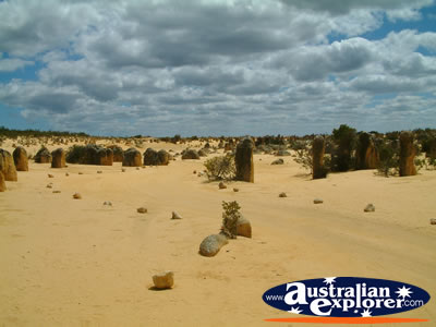 Western Australia - Cervantes the Pinnacles . . . CLICK TO VIEW ALL CERVANTES POSTCARDS