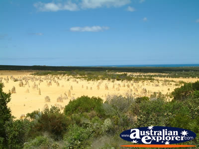 The Pinnacles in Cervantes Western Australia . . . CLICK TO VIEW ALL CERVANTES POSTCARDS