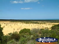 The Pinnacles in Cervantes Western Australia . . . CLICK TO ENLARGE