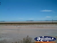 Mudflats Between Kambalda & Norseman . . . CLICK TO ENLARGE