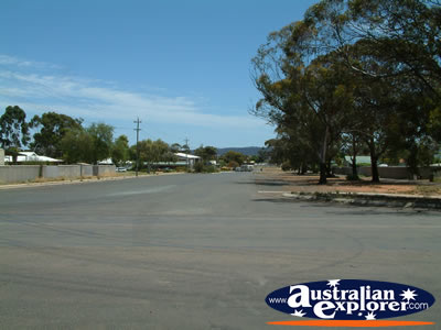 View Down Norseman Street . . . CLICK TO VIEW ALL NORSEMAN POSTCARDS