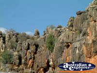 Closeup of Fitzroy Crossing Geikie Gorge . . . CLICK TO ENLARGE