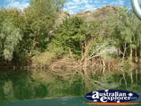 Natural Surroundings at Fitzroy Crossing Geikie Gorge . . . CLICK TO ENLARGE