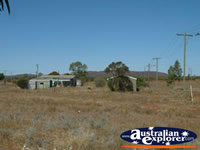 Yalgoo Street . . . CLICK TO ENLARGE