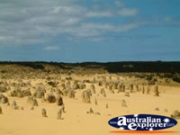 Cervantes the Pinnacles in Western Australia . . . CLICK TO ENLARGE