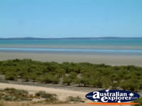 View of Karratha Mud Flats . . . CLICK TO ENLARGE