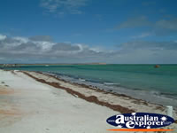 Beautiful Denham Shark Bay . . . CLICK TO ENLARGE