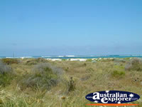 Lancelin View . . . CLICK TO ENLARGE