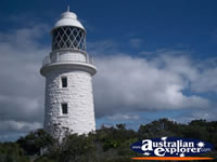Cape Naturaliste Lighthouse amongst Trees . . . CLICK TO ENLARGE