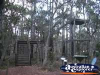 Jarrah Canopy Walk Forest Heritage Centre in Dwellingup . . . CLICK TO ENLARGE