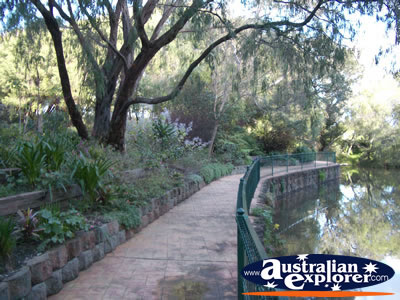 Harvey River Walkway . . . CLICK TO VIEW ALL HARVEY POSTCARDS