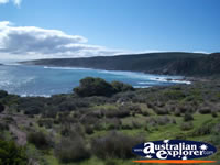 View of Leeuwin Naturaliste National Park . . . CLICK TO ENLARGE